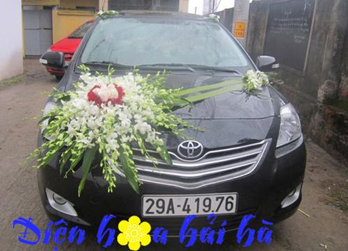 Xe hoa dùng lan thái trắng