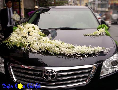 Xe hoa kế bằng lan trắng