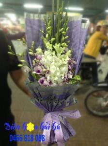 bó hoa lan đẹp nhất việt nam