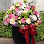 Cách chọn hoa chúc mừng ngày 20/10 theo ý nghĩa các loài hoa