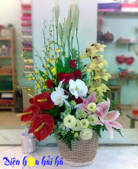 Giỏ hoa đẹp lan hồ điệp