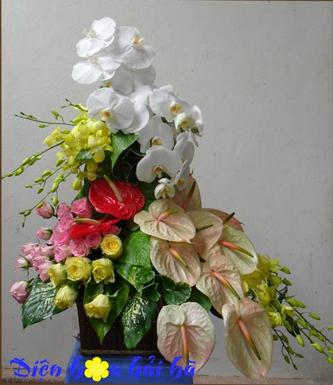 Giỏ hoa hồ điệp chúc mừng