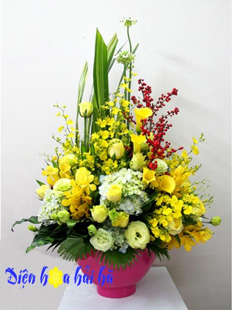 Giỏ hoa lan vũ nữ