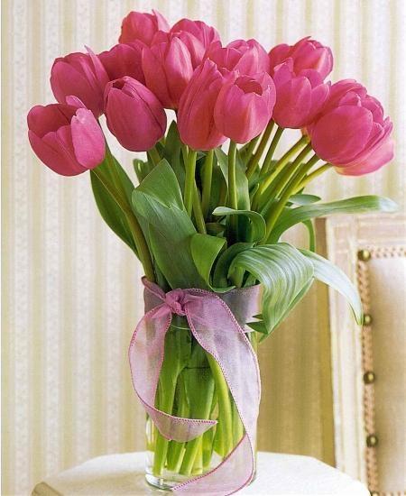 Bình hoa tuylip hồng