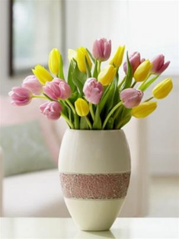 hoa tuy lip