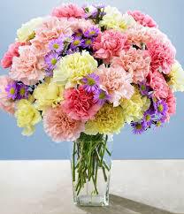 Hoa cẩm chướng điện hoa