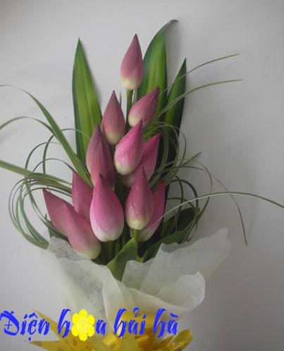 Bó hoa sen đẹp