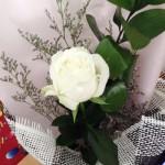Hoa hồng trắng một tình yêu vĩnh cửu