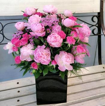 Hoa mẫu đơn Hoa tặng mẹ