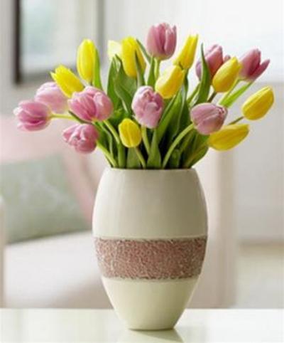 Bình hoa tulip các mầu