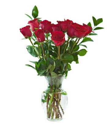 Bình hoa hồng đỏ đơn giản