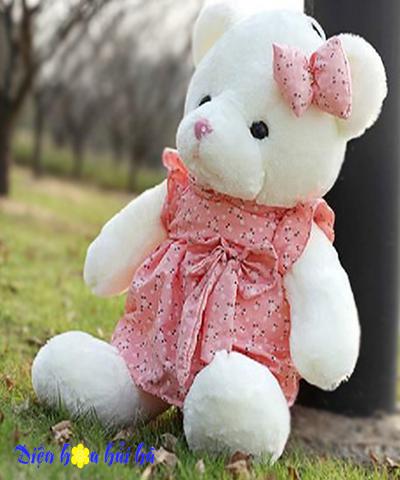 Gấu bông áo hoa