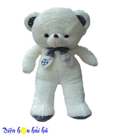 Gấu bông quàng khăn
