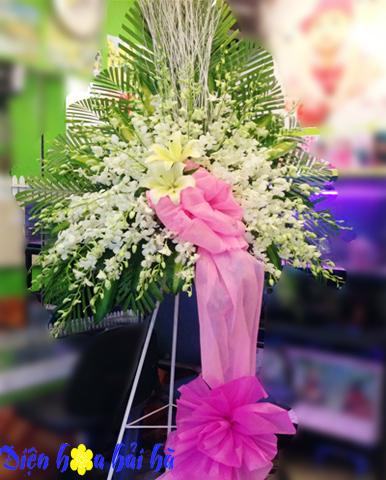 Lẵng hoa lan đẹp
