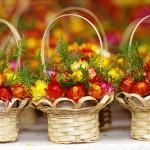 Sự tích hoa bất tử – Cúc bất tuyệt