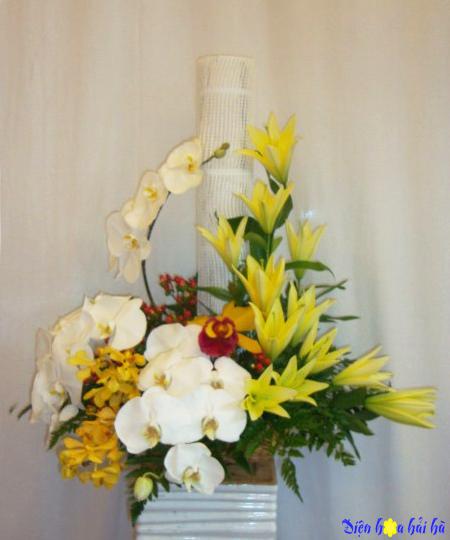 Bình hoa hồ điệp trắng ly vàng sang trọng;