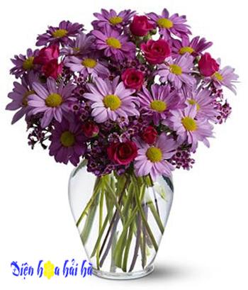 Hoa-daisy-loai-hoa-may-man-cho-thang-4