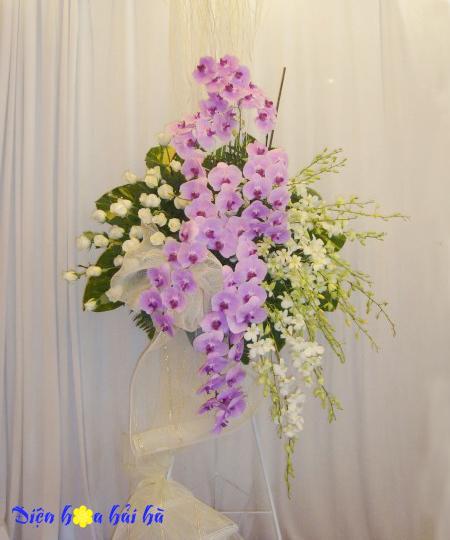 Kệ hoa lan hồ điệp và lan trắng