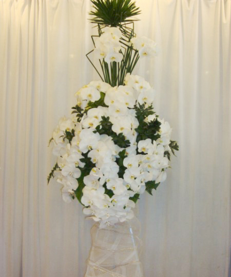 Lẵng hoa hồ điệp trắng sang trọng