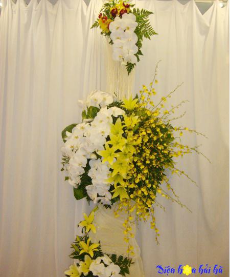 Lẵng hoa lan hồ điệp sang trọng