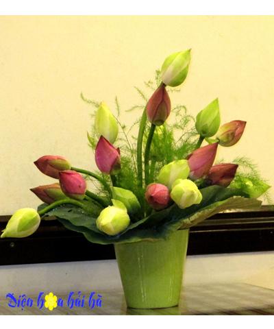 Bình hoa sen hồng và sen xanh