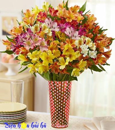 Bình hoa lily Peru nhiều mầu