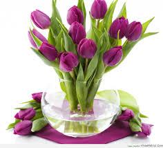 Hoa tulip - Hoa kỷ niệm ngày cưới