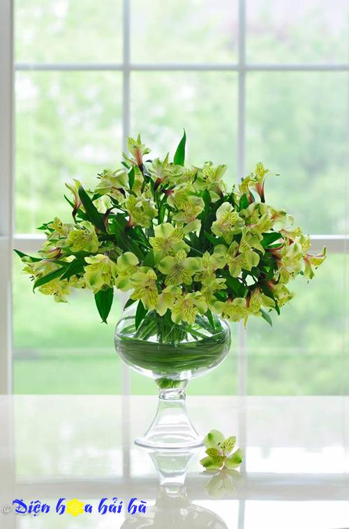 Hoa lily peru 2 - Hoa tươi đẹp