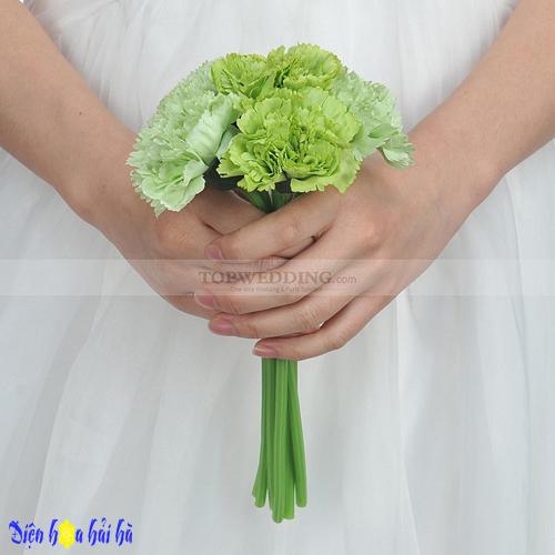 hoa cẩm chướng xanh