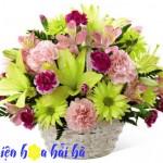 6 loài hoa ngày 20/10 tặng cô giáo cực đẹp