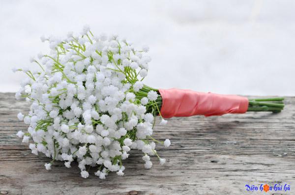 Chuyện tình loài hoa baby trắng