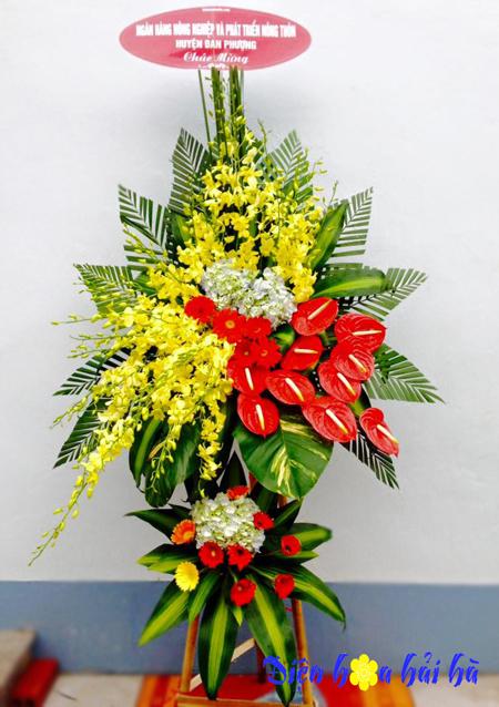 Lẵng hoa chúc mừng lan vàng hồng môn