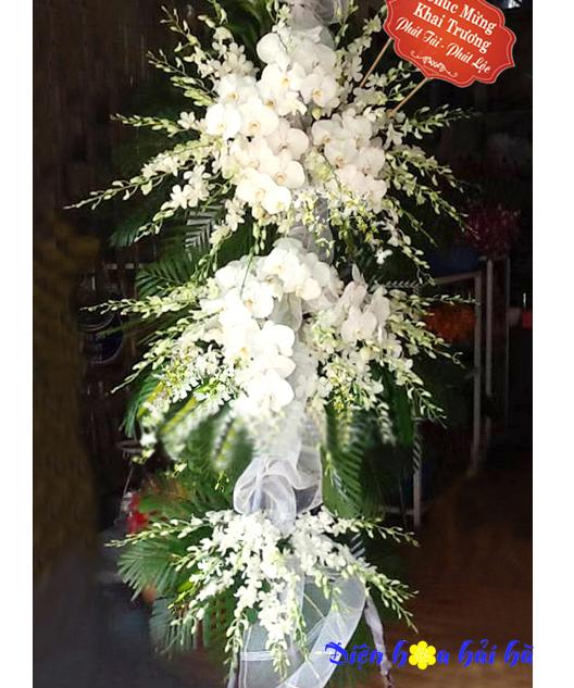 Điện hoa chúc mừng sang trọng bằng hoa lan hồ điệp