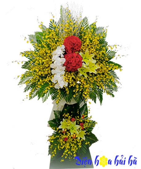 Hoa khai trương bằng hoa lan vũ nữ