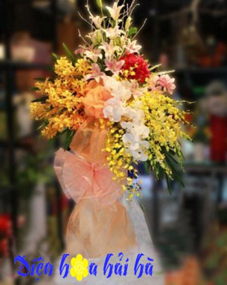 Hoa khai trương sang trọng bằng hoa lan