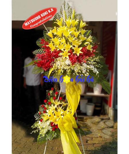Hoa mừng khai trương bằng hoa lan ly