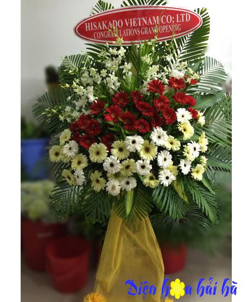 Lẵng hoa chúc mừng bằng hoa đồng tiền đẹp