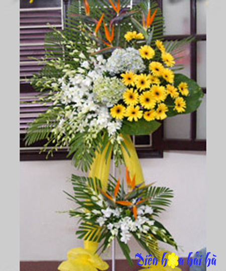 Lẵng hoa chúc mừng khai trương bằng hoa lan và đồng tiền