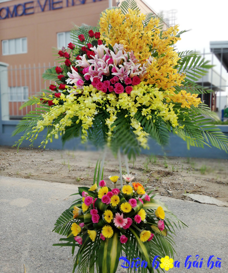 Lẵng hoa mừng khai trương bằng hoa lan ly đồng tiền