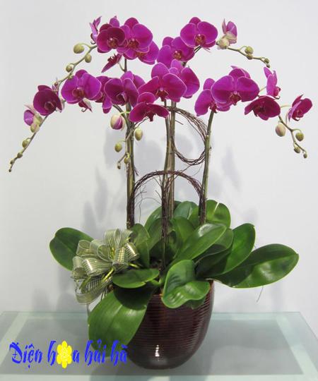 Hoa tặng kỷ niệm ngày cưới năm thứ 28