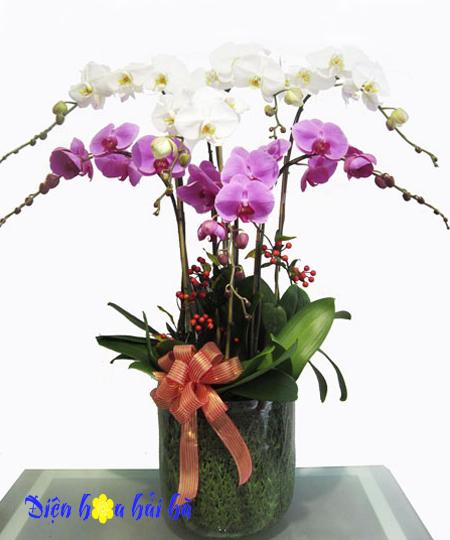 Hoa tặng nam giới mẫu 13