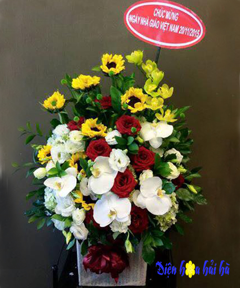 Giỏ hoa chúc mừng hoa hồ điệp hồng đỏ