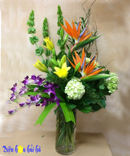 Bình hoa thiên điểu lan tím