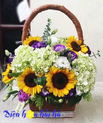 Giỏ hoa hướng dương và cẩm tú cầu