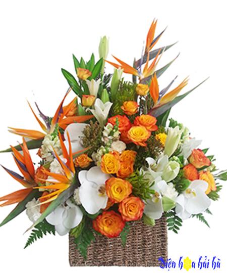 Giỏ hoa thiên điểu hồ điệp