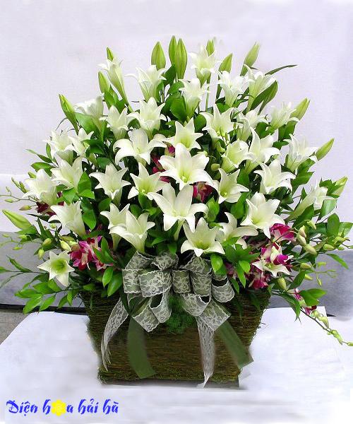 Giỏ hoa loa kèn mẫu 5