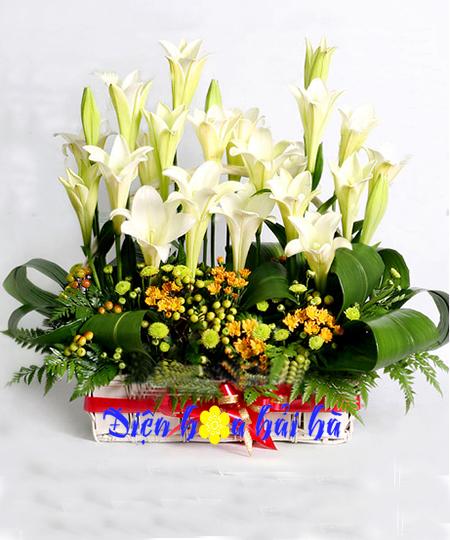 Giỏ hoa loa kèn mẫu 7