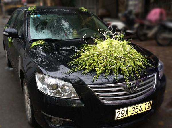 Mẫu xe hoa cô dâu đẹp nhất lan xanh