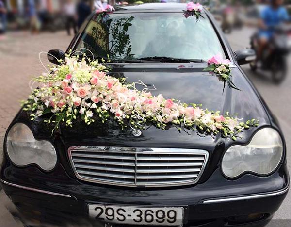 Mẫu xe hoa cô dâu lan trắng hồng