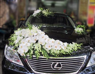Trang trí hoa xe cưới hồ điệp trắng
